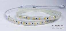 福建5730-60无导线灯带